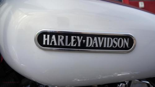 harley-davidson-sportster-low[10]